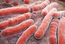 علماء أكسفورد يحددون الأسباب الجينية لمقاومة السل للأدوية فى أكبر دراسة عالمية
